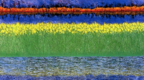 Ernst-Sea-of-Grass_edited-11-1024x570