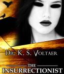 patrick-mclaw-investigation-book-cover